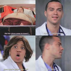 """-X: Did the circus come to town? -Jackson: No … just the elephant. -Miranda: Avery, you're out of this case. -Jackson: Damn it. """"Gray & # s Anatomy"""" Greys Anatomy Frases, Greys Anatomy Funny, Greys Anatomy Cast, Grey Anatomy Quotes, Greys Anatomy Scrubs, Greys Anatomy Episodes, Greys Anatomy Characters, Jackson Avery, Derek Shepherd"""