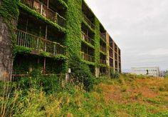 自然や植物に呑み込まれていく廃墟や人工物の画像 (18)