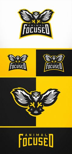 Animal Focused Owl eSports Logo Project by Derrick Stratton