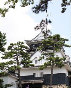 Okazaki Castle, Aichi, Japan 岡崎城