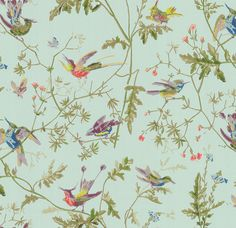 A romantic floral print, Hummingbirds depicts delicate birds perched on foliage and flowers. Originally a handmade block print wallpaper dating back to the century from the Cole and Son archiv Wallpaper Samples, Wallpaper Roll, Wallpaper Direct, Print Wallpaper, Washable Wallpaper, Painting Wallpaper, Wallpaper Ideas, Hummingbird Wallpaper, Cole Son