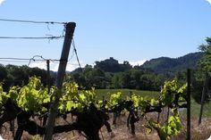 Provence Provence, Utility Pole, Vineyard, Outdoor, Food, Outdoors, Vineyard Vines, The Great Outdoors, Meals