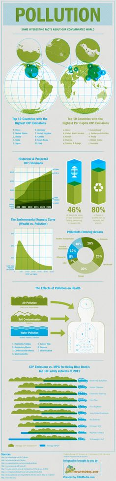 Interesting facts about our contaminated world #pollution #environment | #infographics repinned by @Piktochart