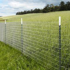 Wire garden fence.
