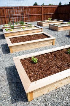 Cheap Raised Garden Beds, Raised Garden Bed Plans, Raised Vegetable Gardens, Vegetable Garden Design, Raised Bed Diy, Raised Garden Bed Design, Raised Bed Gardens, Garden Box Plans, Making Raised Beds