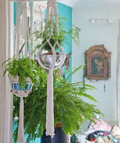 This Urban jungle was shared by {Janice Issitt}. Find more Urban jungle ideas and inspiration at{mine} Florence Chalk Paint, Using Chalk Paint, Macrame Plant Hangers, Urban, Colours, Plants, Annie Sloan, Painting, Peeps