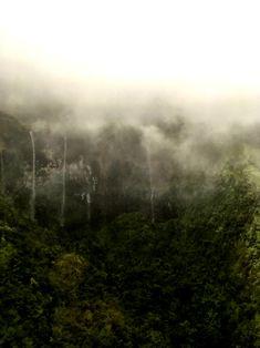Traumwelt Na-Pali-Coast, wie aus einer anderen Welt Grand Canyon, Das Hotel, Kauai, Celestial, Water, Outdoor, Tropical Gardens, Perfect Place, Waterfall