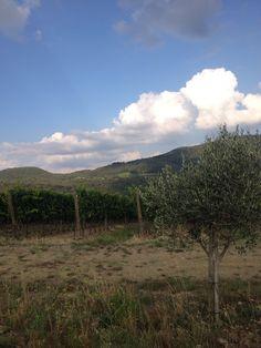 italy landschap
