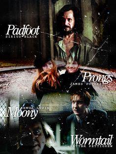 """Padfoot"" Sirius Black, ""Prongs"" James Potter, ""Moony"" Remus Lupin, ""Wormtail"" Peter Pettigrew"