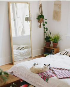 Full mirror, plants and low bed