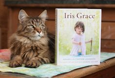6-Year-Old Painting Prodigy and Her Therapy Cat Continue to Inspire with Their Creative Memoir - My Modern Met