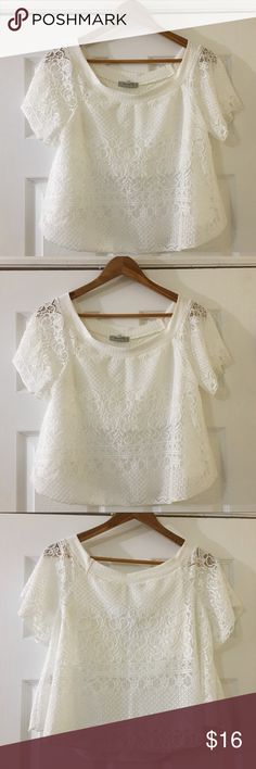 NWT White Lace Papaya Blouse Shirt Top Brand new and with tags! beautiful white and laced blouse by Papaya. Perfect for the summer look! Size L. Please review all photos and ask any questions prior to purchase. Thank you for visiting my closet  Papaya Tops