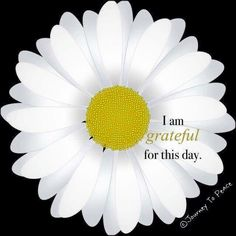 I am.  And I'm hoping to have a day to be even more grateful for, tomorrow.