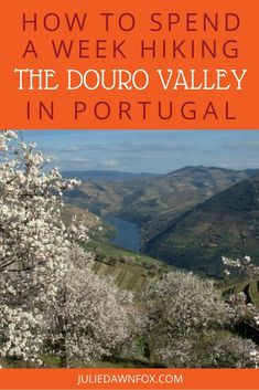 A week-long village to village walking holiday in the Douro Valley of Portugal offers incredible views, the chance to visit several wineries and experience local culture. Visit Portugal, Spain And Portugal, Portugal Travel, Best Countries To Visit, Cool Places To Visit, Europe Travel Tips, Travel Hacks, Travel Ideas, Travel Destinations