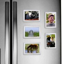 Shop Our NEW Solid Wood Frame Collection. Holiday SALE going on NOW! Free Shipping & Gift Wrap. Available in White Wash or Classic Black. www.fridgepicframes.com  http://www.amazon.com/FridgePIC-Wood-Magnetic-Photo-Frames/dp/B0127EKQ0A/ref=sr_1_2ie=UTF8&qid=1447342795&sr=8-2&keywords=fridgepic
