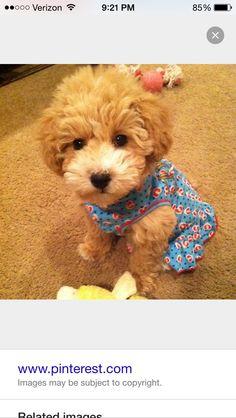 Cutie!!!!