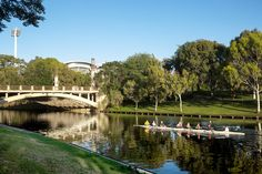 Adelaide, Australia, NYTimes To learn more about #Adelaide | #SouthAustralia, click here: http://www.greatwinecapitals.com/capitals/adelaide-south-australia