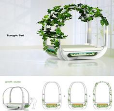 Futuristic Home Furniture . A bed that grows ivy all around it!