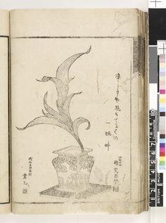 Hokusai Sashi-ire Hana no Futami 挿入花の二見 1798