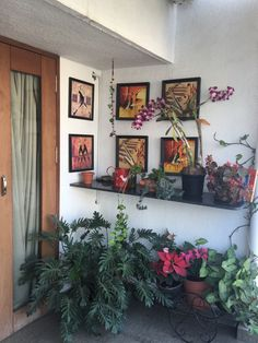 If you are looking for Diy Small Apartment Balcony Garden Ideas, You come to the right place. Below are the Diy Small Apartment Balcony Garden. Apartment Balcony Garden, Apartment Plants, Apartment Balcony Decorating, Apartment Balconies, Terrace Garden, Indoor Garden, Apartment Living, Small Outdoor Patios, Small Patio