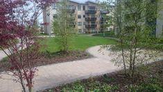 Elmfield Dublin, Landscape Development on Podium Slab Landscape Architects, Dublin, Sidewalk, Side Walkway, Walkway, Walkways, Pavement