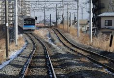 A local train in Japan: Murakami's new novel concerns a malaise-filled Japanese railway engineer. Photo: Getty   Haruki Murakami, Colorless Tsukuru Tazaki and His Years of Pilgrimage, Harvill Secker, 304pp, £20