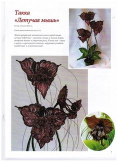 Bat Plant, Beaded Flowers, Bead Art, Bead Weaving, Bead Crafts, Beaded Embroidery, Projects To Try, Beads, Floral