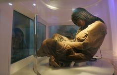 """An Inca mummy known as the """"Maiden""""—one of several sacrificial victims found in the Andes mountains—sits on display in a museum in Salta, Argentina, on September 6, 2007.A new study of the bodies has revealed that the children were """"fattened up"""" with high-protein food for months, then marched on a grueling journey and drugged before their deaths"""