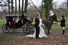 Horse and Carriage in Kent - Horse and Carriage Services