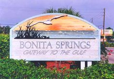 Learn about one of the oldest Southwest Florida cities, Bonita Springs FL. Learn all about Bonita Springs and view homes in the area for sale right now. Florida Gulf Coast Beaches, Florida City, Florida Vacation, Florida Travel, Bonita Springs Florida, Bonita Beach, Florida Gardening, Florida Living, Delray Beach