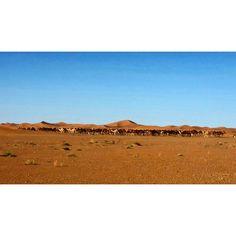 #Viajes de #aventura 4x4 por el #desierto del #Sáhara en #Marruecos. #Tours desde #Marrakech, #fez #Agadir #Casablanca #Tánger