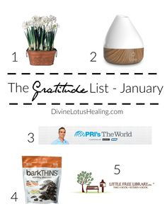 """TheGratitude List January 2017 It's that time of year again.... where I recommit to myself to hold all my wellness practices on the """"front burner"""" of my life. Not that I let any of them go last year... it's just nice to pause"""