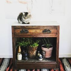Vintage cabinet, a rug, ceramics, plants, two portraits on the wall, and let's not forget the cat - ❤️❤️❤️ #lifebetterwithart #thejoyoflivingwithart 📷 @mmvintage59 . 🖌 . 🖌 . 🖌 . 🖌 . #thejoyoflivingwithart #entryway #portrait #portraits #wallart #homedecor #interiorstyling  #interiorinspo #plantsmakepeoplehappy #artonwall #interiorphotography #interiors #rug #ceramics #catsofinstagram #interiordesign #interiordesignideas #cabinet #vintage #bohovibe