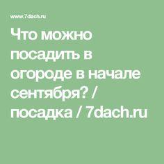 Что можно посадить в огороде в начале сентября? / посадка / 7dach.ru