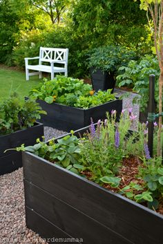 The summer garden kitchen garden was built in May this year. Strömsö's growth boxes were sized to the side of the summer room p The summer garden kitchen garden was built in May this year. Strömsö's growth boxes were sized to the side of the summer room p Potager Garden, Veg Garden, Garden Boxes, Edible Garden, Building A Raised Garden, Raised Garden Beds, Raised Beds, Diy Planters, Garden Planters