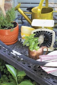 Borrow a mug, colorful bowl or dish from your kitchen and turn it into a planter for houseplants. Check out our kitchen inspired container gardening ideas, perfect for indoor spaces in the chilly months. #gardening #fiskars