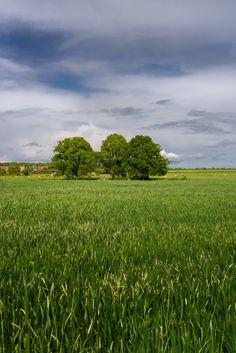 """roubinoff-photos-normandie: """" Landscape Louversey Conches en Ouche Eure Haute…"""