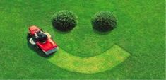 Specializing in lawn care, Greener Grass has been providing lawn fertilizer and weed control services to Calgary and surrounding areas for over 30 Years.