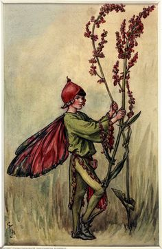 The Sorrel Fairy, painted by Cicely Mary Barker for the first edition of her book 'Flower Fairies of the Summer' (1925).  For production reasons, this illustration no longer appears in the book today.  										   																										Author / Illustrator  								Cicely Mary Barker