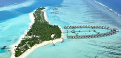 Island Hopping - The Maldives - Stay: Niyama. Maldives Beach, Visit Maldives, Maldives Resort, Maldives Travel, Male Maldives, Top Hotels, Hotels And Resorts, Maldives Weather, Underwater Restaurant