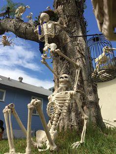 The original Pose-N-Stay skeleton by Seasons. A fun decorative halloween decoration Halloween Outside, Halloween Lawn, Halloween Camping, Halloween Skeleton Decorations, Halloween Displays, Halloween Skeletons, Outdoor Halloween, Halloween Projects, Halloween Party Decor