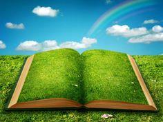 Beautiful blue sky grass