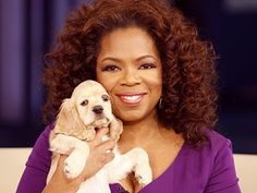 """Oprah has a new baby in her family! Meet Sadie, a blond cocker spaniel. """"She's a beautiful little girl,"""" Oprah says."""
