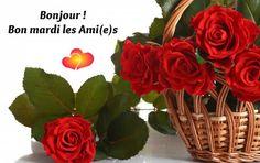 Bon Mardi, Good Morning, Bouquets, Images, Plants, Indoor, Friends, Basket, Flowers