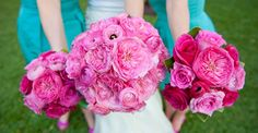 Bride's bouquet: Light pink garden roses & ranunculus with pale pink ribbon, hand tied. Bridesmaid's mix of pink toned roses