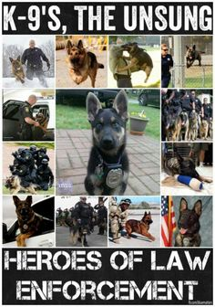 """""""K-9's, the unsung heroes of law enforcement."""""""