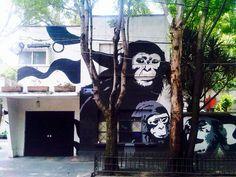 Adiós al mural de la evolución en Coyoacán. La casa que por años adornó las calles de Ortega y Carrillo Puerto ha sido pintada.