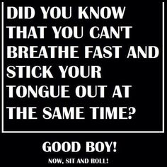 This made me chuckle...now put your tongue back in your mouth.