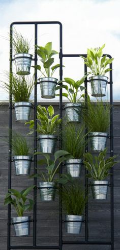 hanging potted herb garden growing herbs planter pots and herbs garden. Black Bedroom Furniture Sets. Home Design Ideas