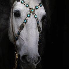 horse jewels